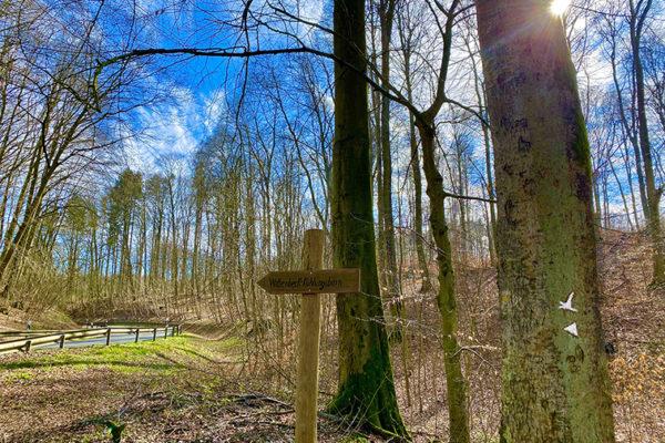 Wanderweg © Jasmin Fernholz (28)